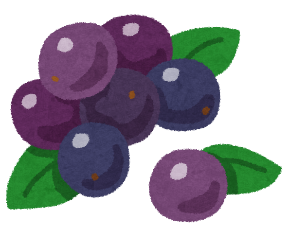 fruit_acai.png